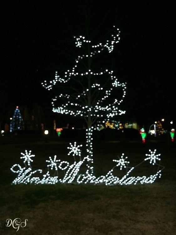 holiday lights © DSG 2014