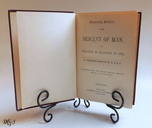 image: Descent of Man book 2nd edition ©DSG