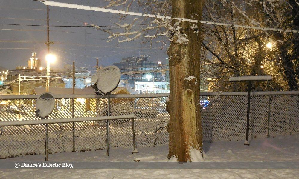 snowy yard ©DSG